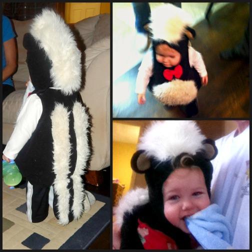 skunk collage